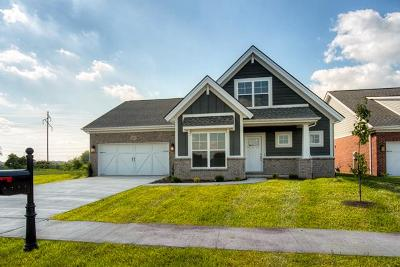 Owensboro Single Family Home For Sale: 3865 Brookfield Drive