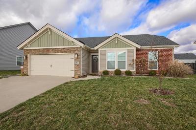 Owensboro Single Family Home For Sale: 5517 Skyline Drive