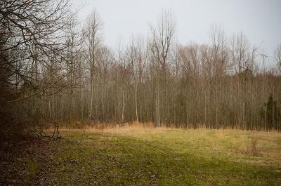 Caneyville Residential Lots & Land For Sale: 297 Sipes School Rd