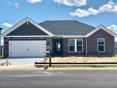 Owensboro Single Family Home For Sale: 4766 Windstone Drive