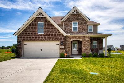 Owensboro Single Family Home For Sale: 4682 Windstone Dr