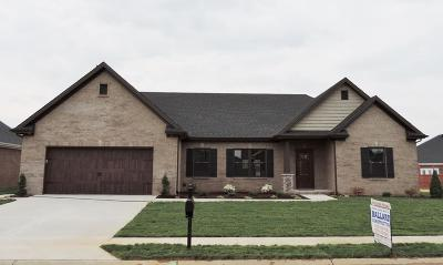 Owensboro Single Family Home For Sale: 6450 Spring Haven Trace