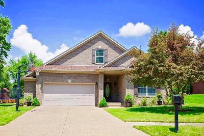Owensboro Single Family Home For Sale: 2973 Lost Lake Cove