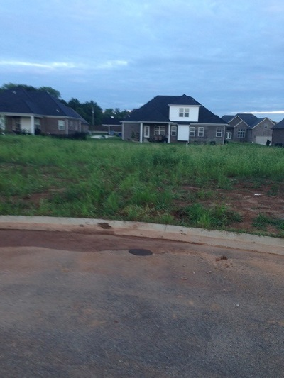 Bowling Green Residential Lots & Land For Sale: 3343 Sunburst Ct