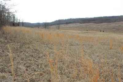 Caneyville Residential Lots & Land For Sale: 7939 Bowling Green Rd
