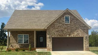 Bowling Green Single Family Home For Sale: 7122 Stone Meade Lane