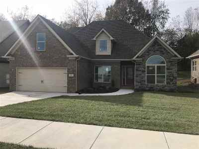 Bowling Green Single Family Home For Sale: 193 Charlotte Dr