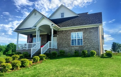Bowling Green Single Family Home For Sale: 273 Ford Ave