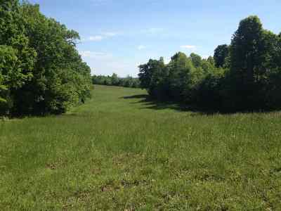 Caneyville Residential Lots & Land For Sale: 5545 Rabbit Flat Rd.