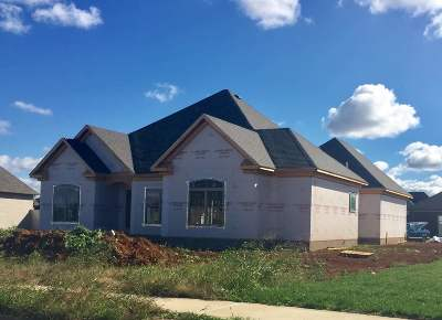 Bowling Green Single Family Home For Sale: 1300 Ivan Downs Blvd