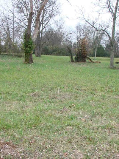 Bowling Green Residential Lots & Land For Sale: 1527 Morgantown Rd