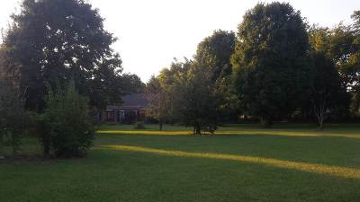 Bowling Green Residential Lots & Land For Sale: 8629 S Nashville Road