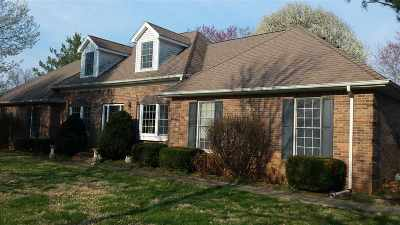 Bowling Green Single Family Home For Sale: 8571 S Nashville Road