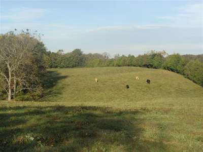 Bowling Green Residential Lots & Land For Sale: 563 Goshen Church Road North