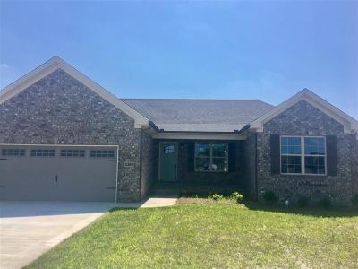 Bowling Green Single Family Home For Sale: 5389 Amber Creek Lane