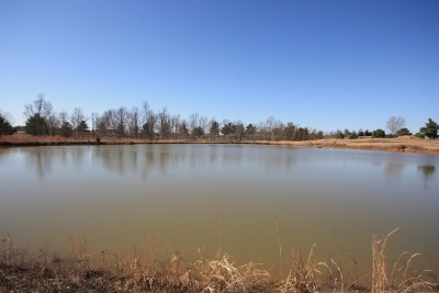 Leitchfield Residential Lots & Land For Sale: 598 Golf Course Rd