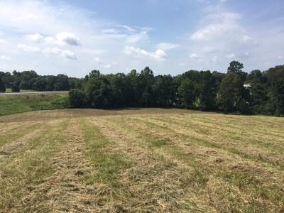 Brownsville Residential Lots & Land For Sale: Veterans Memorial Hwy