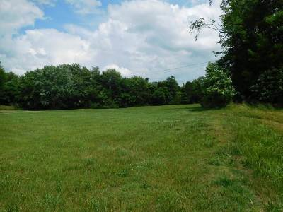Bowling Green Residential Lots & Land For Sale: 2858 Ewing Ford Rd