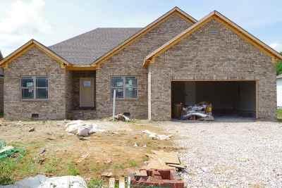 Bowling Green Single Family Home For Sale: 5365 Amber Creek Lane