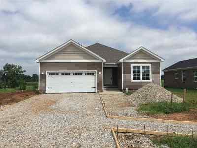 Bowling Green Single Family Home For Sale: 5377 Amber Creek Lane