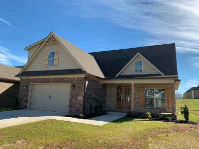 Bowling Green Single Family Home For Sale: 214 Charlotte Drive