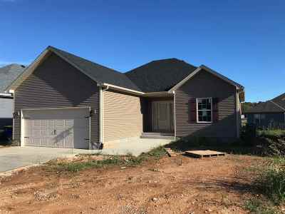 Bowling Green Single Family Home For Sale: 7159 Seagraves Ct