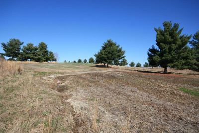 Leitchfield Residential Lots & Land For Sale: 254 Golf Course Rd