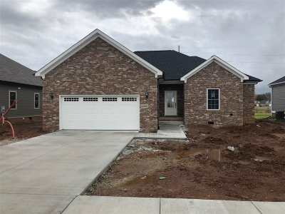 Bowling Green KY Single Family Home For Sale: $239,999