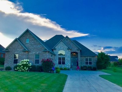 Bowling Green Single Family Home For Sale: 3731 Silver Sun Drive