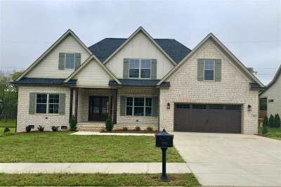 Bowling Green Single Family Home For Sale: 213 Chelsa Court
