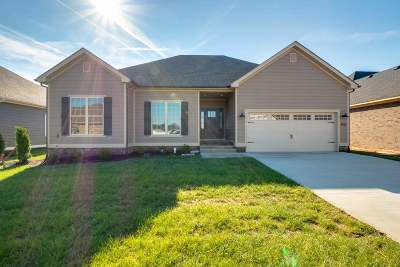 Bowling Green Single Family Home For Sale: 4078 Cadillac Ave