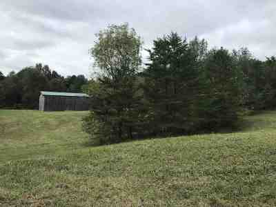 Bowling Green Residential Lots & Land For Sale: 869 Hunts Lane