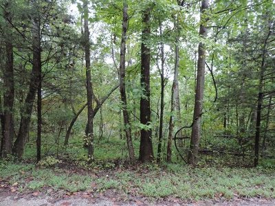 Bowling Green Residential Lots & Land For Sale: 308 Martinsville Trail Rd