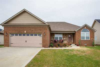Bowling Green KY Single Family Home For Sale: $206,000