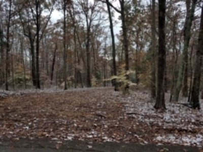 Bowling Green Residential Lots & Land For Sale: Lot 5 Shanty Hollow Rd