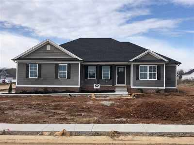 Bowling Green Single Family Home For Sale: 791 Pleasant Meadow Ln
