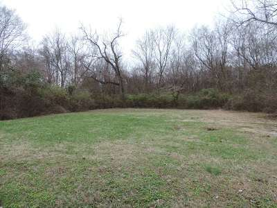 Bowling Green Residential Lots & Land For Sale: 1167 Crewdson Drive