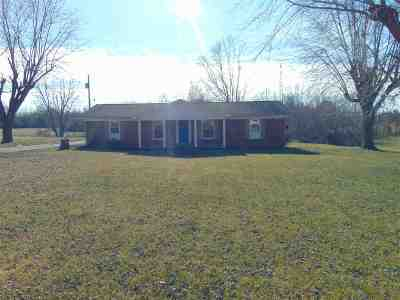 Edmonson County Single Family Home For Sale: 7981 Hwy 259 N