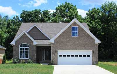 Bowling Green Single Family Home For Sale: 4289 Legacy Pointe