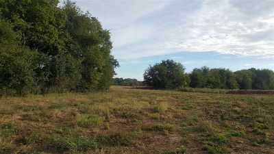 Bowling Green Residential Lots & Land For Sale: 377 McLellan Road