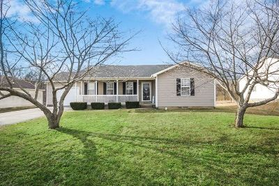 Bowling Green Single Family Home For Sale: 1351 Spring Valley Court