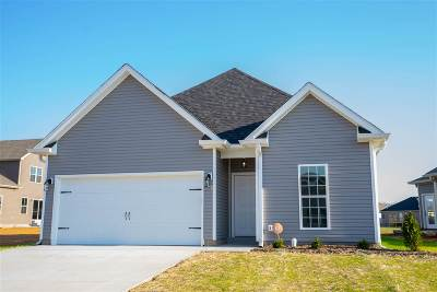 Bowling Green Single Family Home For Sale: 7111 Stone Meade Lane