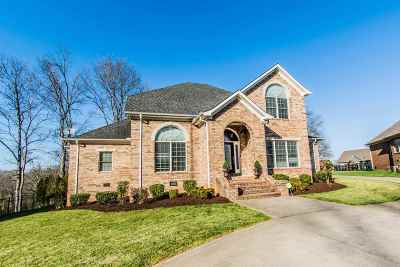 Bowling Green Single Family Home For Sale: 115 Walking Stick Trail Court