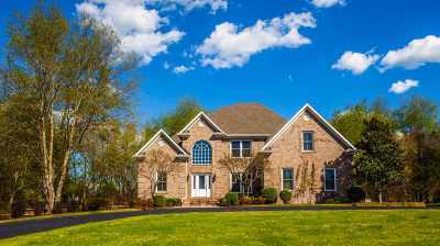 Bowling Green Single Family Home For Sale: 390 Windmere Drive