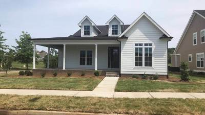 Bowling Green Single Family Home For Sale: 384 Parkhaven Lane