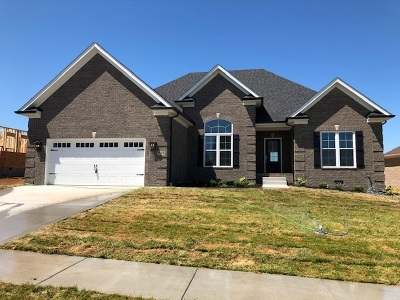 Bowling Green Single Family Home For Sale: 1129 Aristides Drive