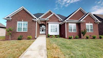 Bowling Green Single Family Home For Sale: 1354 Ivan Downs Blvd.