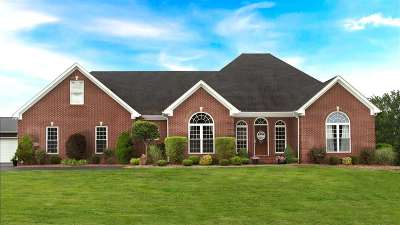 Bowling Green Single Family Home For Sale: 4505 Threlkel Ferry Rd