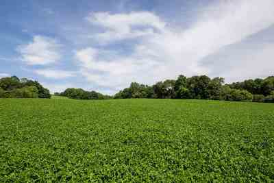 Morgantown Residential Lots & Land For Sale: Caney Fork Road