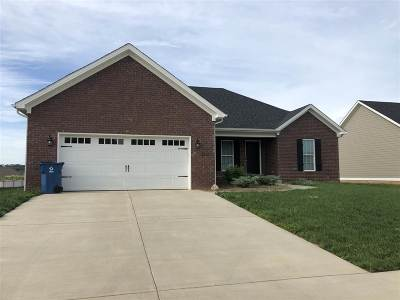 Bowling Green Single Family Home For Sale: 2916 Gunsmoke Trail Way